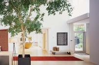 Lối vào nhà đẹp thay lời chào mừng gửi tới các vị khách ghé thăm