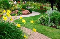 Những lưu ý không thể bỏ qua để có một sân vườn đẹp