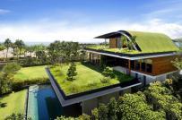 Mê mẩn ngắm những thiết kế vườn trên mái tuyệt đẹp