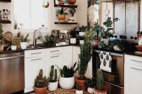 Thiết kế phòng bếp dành cho cô nàng yêu phong cách Bohemian