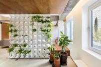 Căn hộ thông tầng gây ấn tượng với bức tường cây xanh ở giữa nhà
