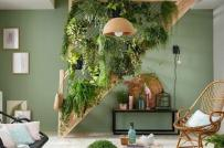 Làm mát nhà mùa hè với vách ngăn xanh độc đáo