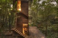 Chạy trốn phố thị ồn ào đến sống trong ngôi nhà trên cây