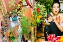 Những góc xanh đáng mơ ước trong biệt thự ở Sài Gòn của Thúy Nga