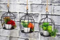 Ý tưởng thiết kế vườn treo nhà phố vạn người mê