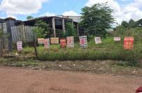 Tạm dừng tiếp nhận hồ sơ tách thửa đất nông nghiệp tại Bình Phước