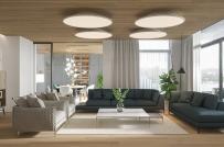Mẫu căn hộ hiện đại, sử dụng gỗ làm điểm nhấn