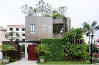Mãi ngắm căn biệt thự có mặt tiền xanh mướt ở Sài Gòn