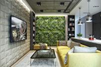 Mát mắt với bức tường cây xanh trong căn hộ nhỏ
