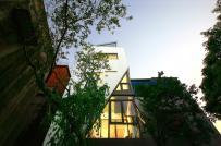 Nằm trong ngõ hẹp Hà Nội, nhà phố vát góc vẫn tràn ngập ánh sáng
