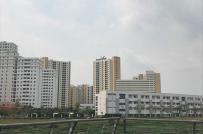Kiến nghị bố trí 1.000-2.000 tỷ đồng vốn ngân sách phát triển nhà ở xã hội
