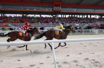 Bổ sung dự án trường đua ngựa vào quy hoạch của Đà Nẵng