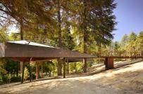 Nhà nghỉ dưỡng hình rắn lướt giữa những tán cây xanh