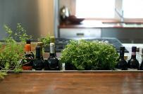 Vườn thảo mộc phòng bếp, với tay là có ngay loại rau gia vị bạn cần