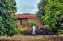Trải nghiệm cuộc sống nông thôn với nhà nghỉ dưỡng mái dốc sát đất