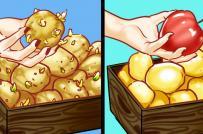 """""""Bỏ túi"""" 10 mẹo nhà bếp hữu ích cho người nội trợ"""