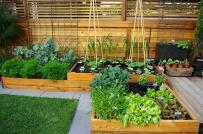 Ý tưởng thiết kế vườn rau củ đẹp, phong cách