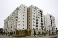 HoREA kiến nghị xây dựng tiêu chí đấu thầu lựa chọn chủ đầu tư dự án nhà ở xã hội