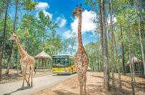 Quảng Ninh sẽ có khu bảo tồn thiên nhiên và du lịch sinh thái Safari