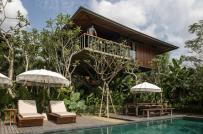 Độc đáo nhà trên cây ở đảo Bali