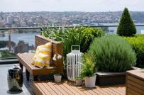 Thiết kế vườn trên sân thượng cần lưu ý gì?