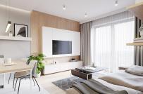 3 mẫu căn hộ nhỏ dưới 40m2 dành cho người độc thân