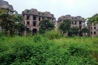 Hà Nội chấm dứt dự án đầu tư, thu hồi đất do không đưa vào sử dụng