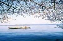 Ngắm vẻ đẹp Tây Hồ của Trung Quốc về mùa hè