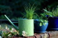 Những vườn hoa xinh lung linh với cách trồng táo bạo