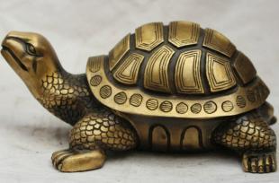 Dùng tượng rùa phong thủy trong nhà nhất định phải lưu ý những điều sau