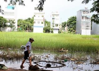 Tp.HCM chấp thuận chuyển đổi đất trồng lúa sang đất ở tại hàng loạt dự án