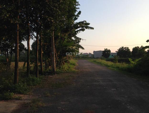 Bán kho xưởng tại Quốc Lộ 1A, Quảng Ninh, Quảng Xương, Thanh Hóa, 2580m2 6789481