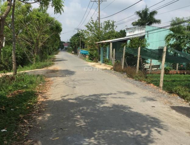 Bán đất Bình Chánh ngay đường Quốc Lộ 50 gần ngã 3 Tân Kim, đất MT đường, giá 1.9 tr/m2, 0909097038 7886426