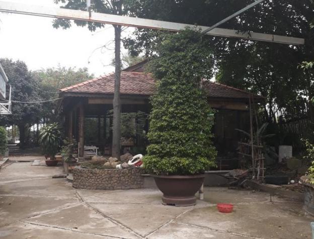 Cần bán nhà đất hai mặt tiền Đỗ Văn Dậy, Hóc Môn. DT 2000m2 (20 x 100), giá 21 tỷ 7894820