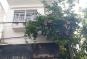 Chỉ 19,5 tỷ sở hữu nhà mặt phố 168 Kim Mã, Ba Đình, Hà Nội giá siêu Covid - 19