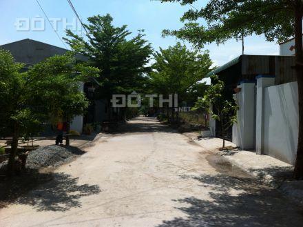 Bán đất mặt tiền Tỉnh Lộ 10, 130m2, giá chỉ 3,68 tr/m2, SH riêng, CK 5% 4603590