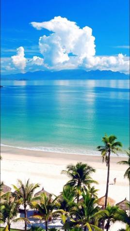 Bán resort tại mặt biển La Gi, Bình thuận DT 4200m2, giá 32 tỷ 11761901