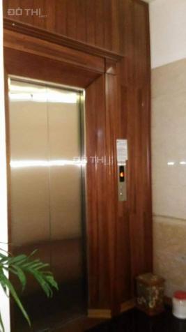 Gia đình cần bán căn nhà nhỏ xinh đường Phương Mai, gần Thanh Xuân 12056716