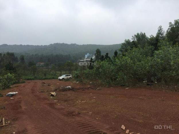 Bán đất vườn cạnh khu nghỉ dưỡng Flamingo Đại Lải, DT 6501m2, 3 mặt tiền, giá 6,6 tỷ. 0982824266 12147759