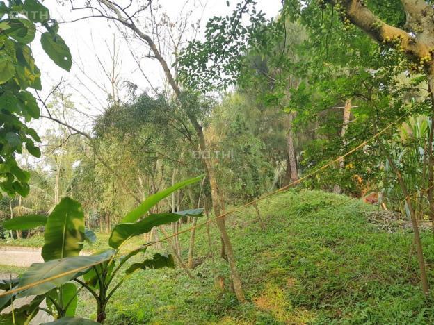 Mua đất làm khu nghỉ dưỡng mà không muốn xây dựng, đây có luôn 4000m2 tại Lương Sơn, Hòa Bình 12587554