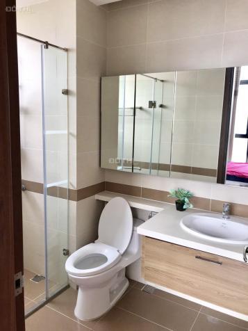Cần cho thuê căn hộ chung cư cao cấp Tràng An Complex, giá tốt 12749213