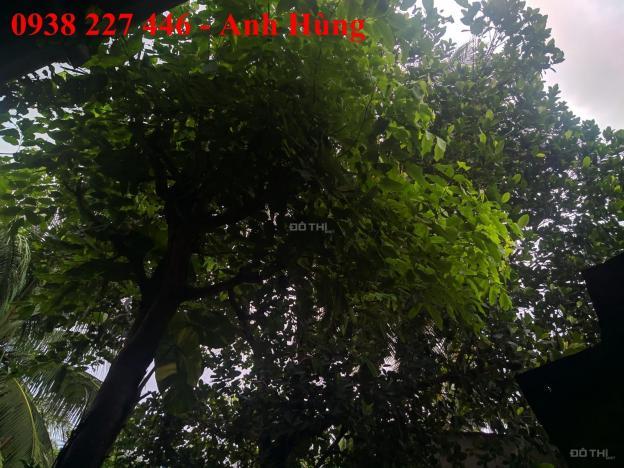 Bán đất mặt tiền QL22B Trà Vong - Tân Biên - Tây Ninh - 8x90m 12806805