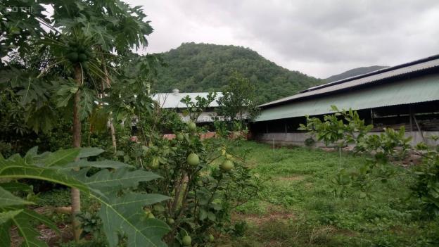 Bán trang trại, khu nghỉ dưỡng gần cảng Cái Mép, TX Phú Mỹ 12821217