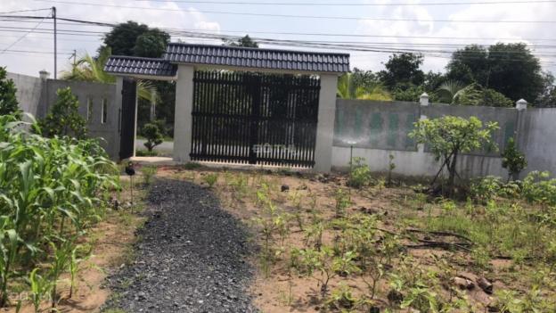 Bán đất xây nhà vườn sinh thái, xây kho bãi giá rẻ huyện Đức Hòa, 15x31m, thổ cư 100% 12891592
