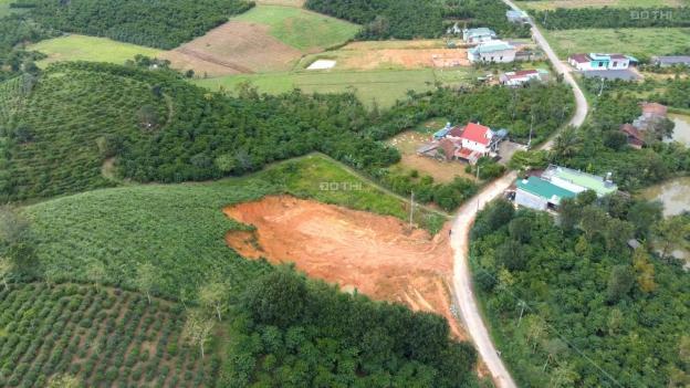 Khu nghỉ dưỡng Bảo Lộc 5800m2 có 200m2 đất ở, 54m mặt tiền đường nhựa 12902938