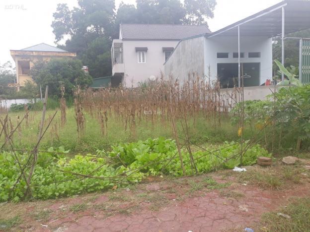 Bán 02 thửa đất liền nhau 10m mặt đường Đinh Tiên Hoàng, Văn Lung, thị xã Phú Thọ 12949664