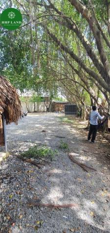Cho Thuê Quán Dt 1000m2 Đã Setup sẵn mô hình Sân Vườn gần Khu du lịch Ngọc Hoa Trang, Đồng Nai 12950970