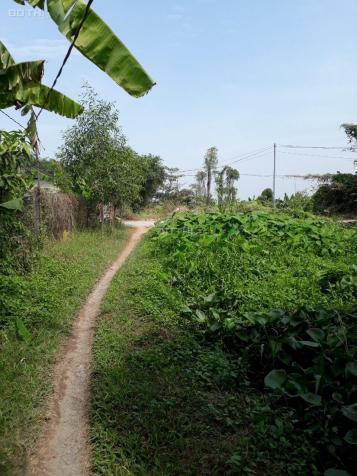 Bán đất giá rẻ đường Thạnh Xuân 52 nối dài xã Đông Thạnh, Hóc Môn, diện tích 2357m2 13050796