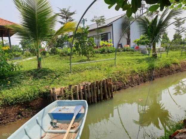 Bán nhà vườn sinh thái 1.6 ha thị trấn Hậu Nghĩa - Đức Hòa - Long An 13052448