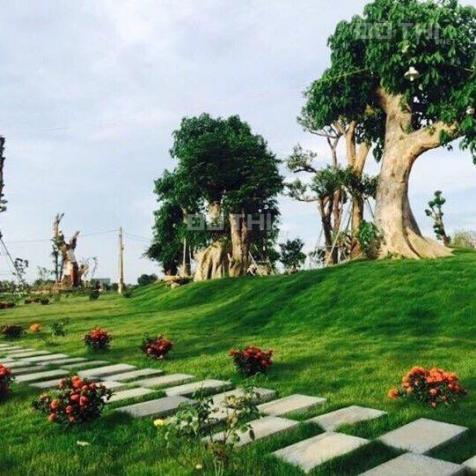 Chính chủ bán lô đất biệt thự Phú Cát City tại trung tâm đô thị vệ tinh Hòa Lạc, diện tích 180m2 13442297